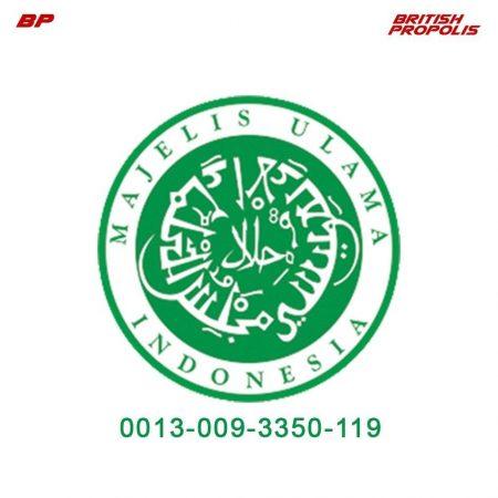 halal-Ina.jpg